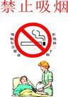 公告0018,公告,平面矢量海报模板,拒绝 有害 烟雾 医院 身体 禁止吸烟