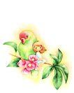 拇指女孩与花0007,拇指女孩与花,彩绘人物情景模板,伙伴 依偎 友谊 桃花 鸟儿