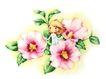 拇指女孩与花0014,拇指女孩与花,彩绘人物情景模板,花天使 小巧 精灵