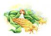 拇指女孩与花0018,拇指女孩与花,彩绘人物情景模板,玉米 包谷 坐谷粒上的小女孩