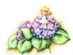 拇指女孩与花0023,拇指女孩与花,彩绘人物情景模板,坐卧 花蕊 梦想