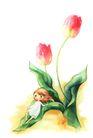 拇指女孩与花0026,拇指女孩与花,彩绘人物情景模板,花叶 滑落 梦幻