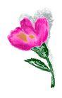 典雅花纹0145,典雅花纹,花纹边框,