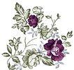 典雅花纹0152,典雅花纹,花纹边框,