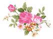 典雅花纹0162,典雅花纹,花纹边框,绿叶 衬托 红花