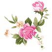 典雅花纹0163,典雅花纹,花纹边框,粉红 花团 翘起
