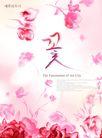应用案例模版0101,应用案例模版,花纹边框,粉红 花底 韩文