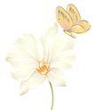 彩绘花纹0321,彩绘花纹,花纹边框,
