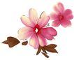 彩绘花纹0333,彩绘花纹,花纹边框,