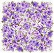 新潮色彩0027,新潮色彩,花纹边框,细小 密集 花圃