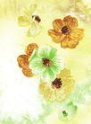 新潮色彩0028,新潮色彩,花纹边框,水彩画 画画 画作
