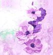 新潮色彩0029,新潮色彩,花纹边框,紫色 莲花 彩莲