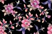 新潮色彩0052,新潮色彩,花纹边框,