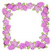 花卉边框0012,花卉边框,花纹边框,紫花 围拢 环形