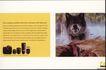 世界广告海报设计年鉴2007-10105,世界广告海报设计年鉴2007-1,世界广告海报设计年鉴2007,野生动物 照像机