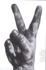 奎内克0047,奎内克,世界设计大师,胜利 代表 含义