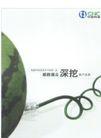 中国设计师作品0077,中国设计师作品,中国历年优秀广告作品,