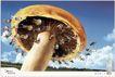 家电及关联品0023,家电及关联品,中国广告作品年鉴2007,蘑菇 摩天轮 快乐的人群 蓝天