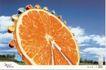 家电及关联品0025,家电及关联品,中国广告作品年鉴2007,橘子片 摩天轮 冰箱