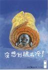 家电及关联品0030,家电及关联品,中国广告作品年鉴2007,冰箱 小狗 低温 毛毯
