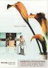 房地产及关联品0025,房地产及关联品,中国广告作品年鉴2007,家居 女主人 花 自然