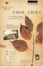 房地产及关联品0074,房地产及关联品,中国广告作品年鉴2007,