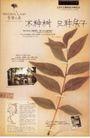 房地产及关联品0076,房地产及关联品,中国广告作品年鉴2007,