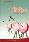 文化用品及其他0017,文化用品及其他,中国广告作品年鉴2007,新农村 切开的洋葱 箭靶