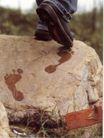 服饰及关联品0004,服饰及关联品,中国广告作品年鉴2007,石背 行走 足迹