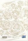 食品0023,食品,中国广告作品年鉴2007,玫瑰花 牛奶 香浓