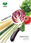 乐康蔬菜0001,乐康蔬菜,企业广告PSD分层,蔬菜 健康 分享