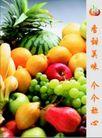 新乔水果0003,新乔水果,企业广告PSD分层,水果 丰富 种类