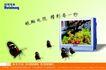 锐翔电视0003,锐翔电视,企业广告PSD分层,彩色 屏幕 精彩