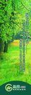 绿园新城0002,绿园新城,优秀房地产广告年鉴2007,林地 草皮 覆盖