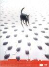 台湾海招贴画0104,台湾海招贴画,招贴画设计,小猫 鼠标