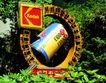 创意广告牌0024,创意广告牌,矢量名片模板,圆形 环境 生态