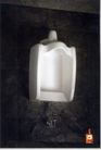 保健品0004,保健品,第十三届中国广告节获奖作品集,洁白 冲水 马桶