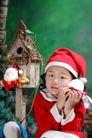 可爱造型0027,可爱造型,亲子教育,圣诞帽 表情 鸟笼
