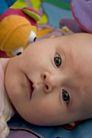 新生婴儿0085,新生婴儿,亲子教育,眼神 观看 新生