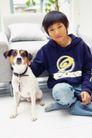 温馨家庭0069,温馨家庭,亲子教育,家有爱犬