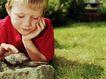 童趣0011,童趣,亲子教育,石头 蜗牛 爬行