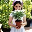 童趣0035,童趣,亲子教育,花草 盆栽 植物