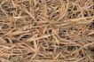 自然底纹0016,自然底纹,底纹,竹叶 散落 满地