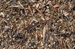 自然底纹0018,自然底纹,底纹,渣滓 碎屑 细条