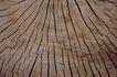 自然底纹0075,自然底纹,底纹,木头 锯面 开裂