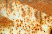 铁锈底纹0062,铁锈底纹,底纹,