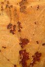 铁锈底纹0099,铁锈底纹,底纹,锈迹 黄色 斑驳