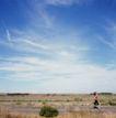 养生0011,养生,生活,跑步 健身 晨练 速度 天空