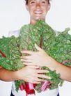 养生0037,养生,生活,抱着 菜叶 青叶