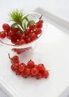 生活小景0172,生活小景,生活,白瓷盘 一株绿草 红果子